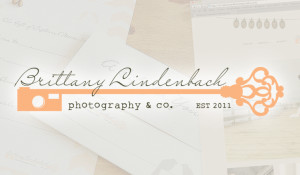 Brittany Lindenbach Photography Brand Styling